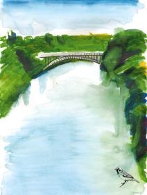 claudelands-bridge26012017-copy-copy